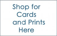 Shop for Cards and Prints