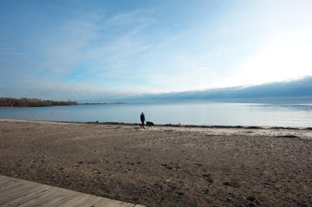 _JAS4940-WEB-Man-walking-his-dog-on-beach