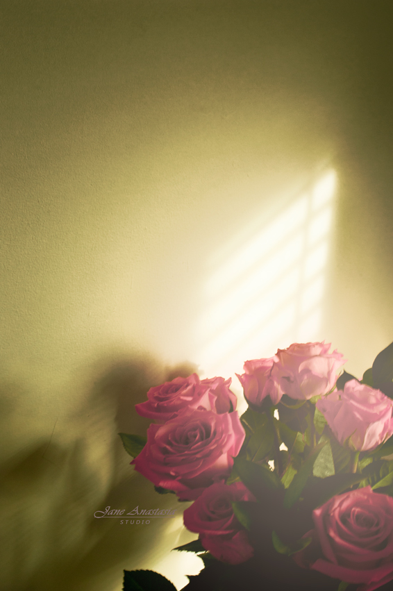 _JAS6690-WEB-Roses-Green-wall