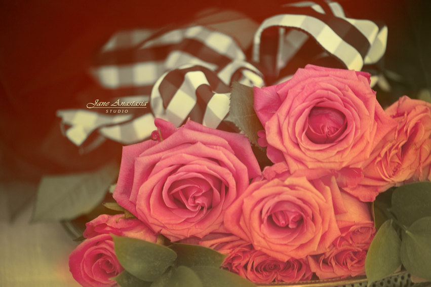 _JAS6829-2WEB-Pink-Roses-and-Black-checked-ribbon