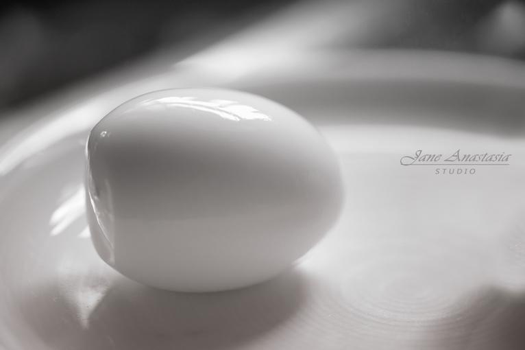 _JAS8627--2WEB-Egg