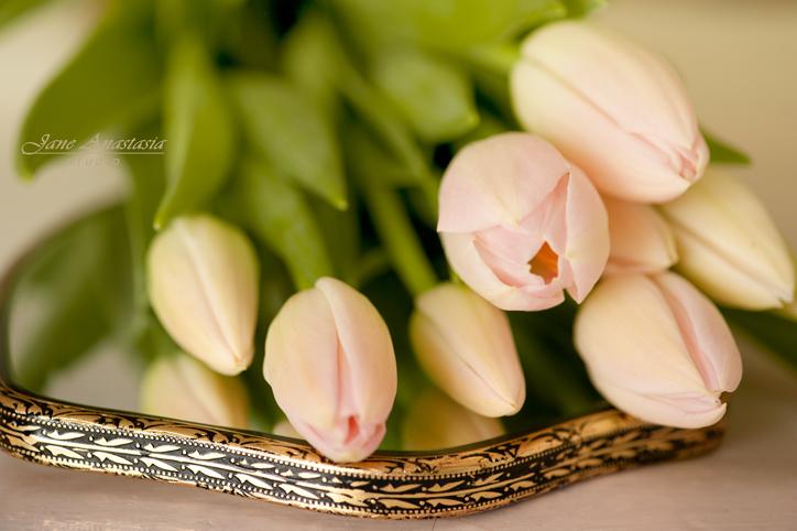 _JAS9302-WEB-2-Blush-Pink-Tulips