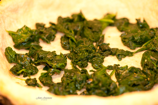 _JAS1871-WEB-Spinach-at-bottom-of-quiche