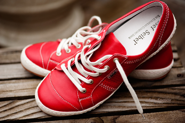 red……new dog walking shoes…. | Jane Anastasia Studio