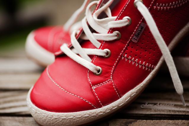 _JAS2006-WEB-3-Red-Dog-Walking-shoes