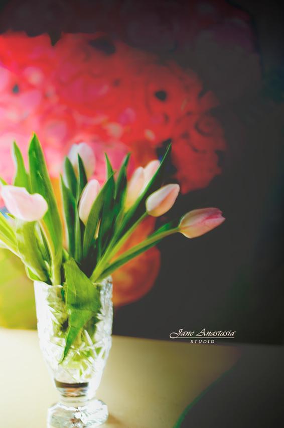 _JAS1524-WEB-Tulips-4