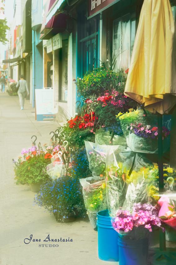 _JAS4290-WEB-Flowers-on-sidewalk-4