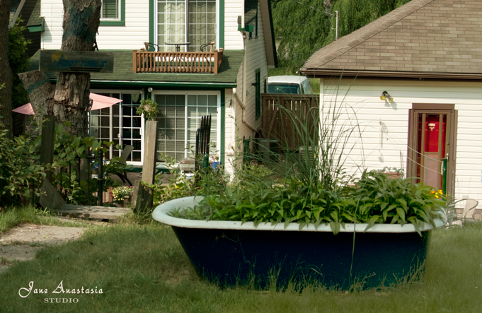 _JAS6181-WEB-Tub-filled-with-plants