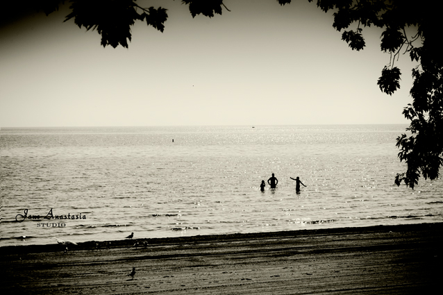 _JAS7653-WEB-People-in-the-water-at-the-beach