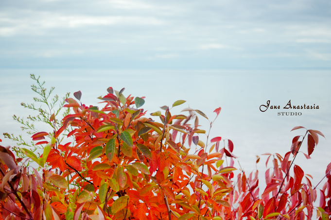 _JAS0351-WEB-Fall-leaves-at-lake-2