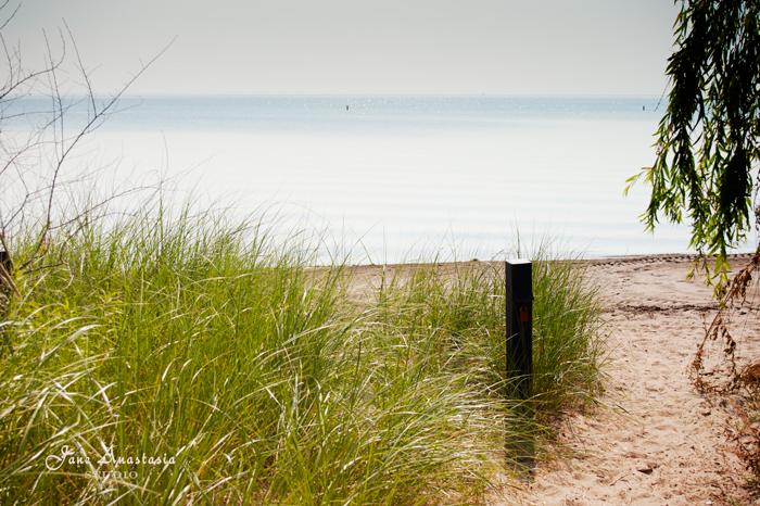 _JAS5317-WEB-Grass-to-the-beach