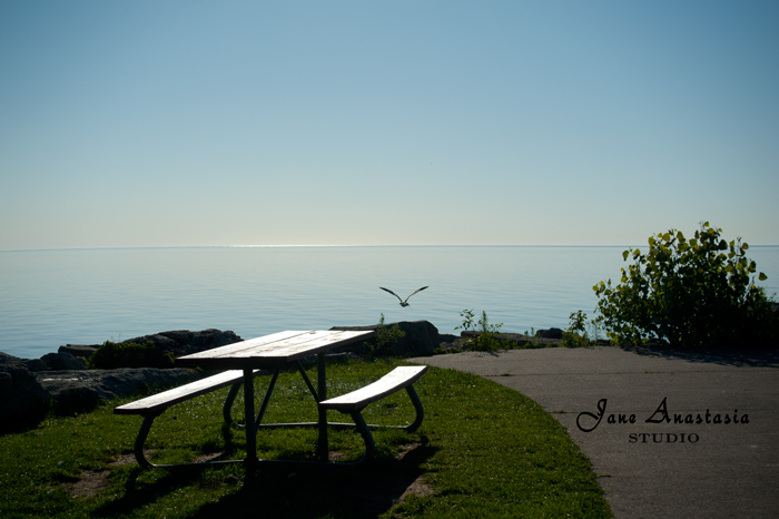 _JAS5623-WEB-Early-morning-at-the-lake