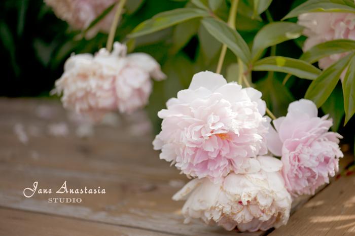_JAS5968-WEB-Pink-Peonies