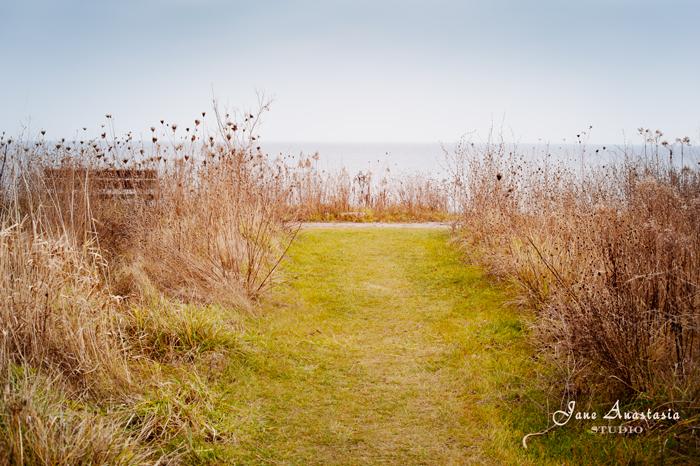 _JAS9723-WEB-Path-to-the-lake