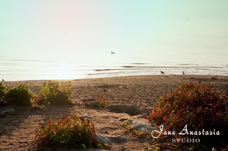_jas4117-web-golden-sand-at-lake-js